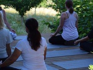 4-Daagse Solo Retreat met Mindfulness, Yoga en Schilderen in Goričko, Slovenië