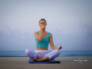 22 Day 200-Hour Extensive Yoga Teacher Training in Kerala