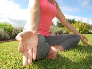 8 días meditación privada y retiro de yoga en Canadá