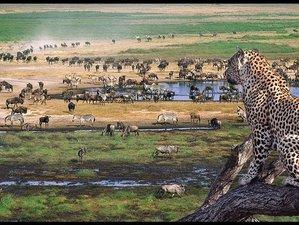 4 Days Safari Tour in Serengeti National Park and Ngorongoro Crater, Tanzania