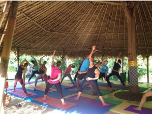 8-Daagse Vechtsport, Surf en Yoga Retraite in Bali