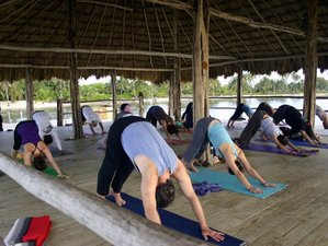 8 Days 100 Hours Power Yoga Teacher Training in San Pedro, Belize