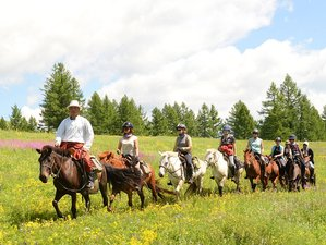 11 Day Mongol Horse Trail Riding Tour in Mongolia