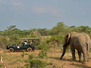 3 Days Budget Kruger National Park Scenic Safari South Africa