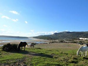 7 Tage Naturpark Reiten, Meditation und Yoga Retreat in Andalusien, Spanien