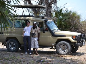 11 Days Guided Safaris in Tanzania