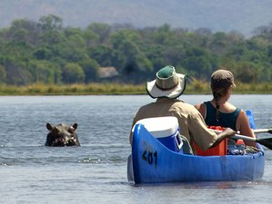 10 Days Zambezi Canoeing and Kafue National Park Safari in Zambia