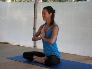 8 Days Juice Fasting and Yoga Retreat in Goa, India