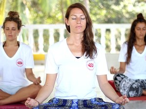8 Days Yoga and Meditation Retreat in Dharamsala, India