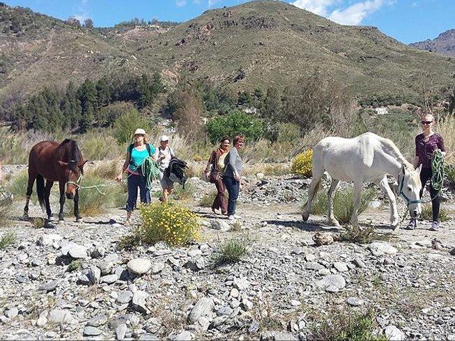 7-Daagse Kook, Meditatie en Yoga Retraite in Granada, Spanje