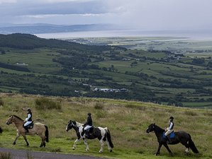 6 Days Castles, Iconic Coast, and Countryside Horse Riding Holiday in County Antrim, North Ireland