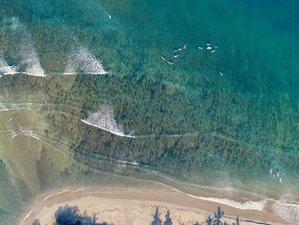 4 Days Paradise Surf Camp in La Saladita, Mexico