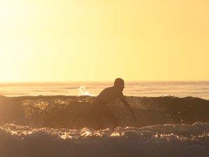 6 Day All Levels Nature Surf Camp near Porto, Aveiro