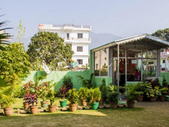 5 Days Ayurveda and Yoga Retreat Kerala, India