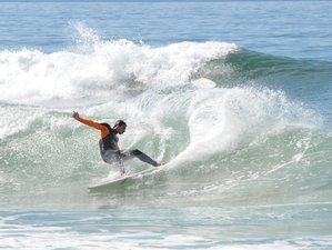 8 Days Fluidity Eco Surf Camp at Porto Beach Paradise