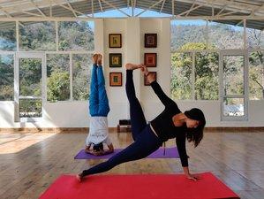 21 Day 200-Hour Ashtanga & Hatha Yoga Teacher Training Course at Adhiroha in Rishikesh
