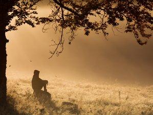 12 Days Individual Retreat with Silence and Meditation outside Hamburg, Germany