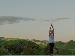 3 Day Sage and Soul Adventure Retreat with Yoga and Five Treasures Qi Gong in Havelock North