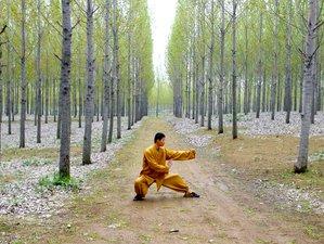 2 Months Hard Style Yu Kung Fu Summer Training Camp in Tengzhou, China