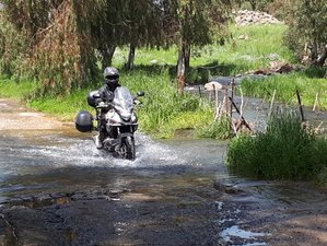 5 Day Touring Across Israel Guided Motorcycle Tour to Tel Aviv, Jerusalem, and Eilat