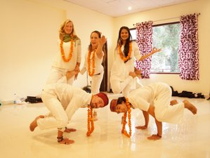 24 Days 200-Hour Multistyle Yoga Teacher Training in Dharamsala, India