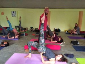 14 Days 100-Hour Hatha Yoga TTC in Dharamsala