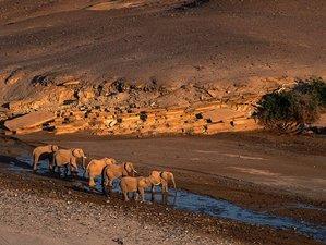 3 Day Etosha Express Safari in Namibia