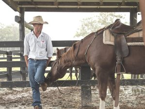 4 Days Mountain Lodge Horse Riding Holiday in Byron Bay NSW, Australia