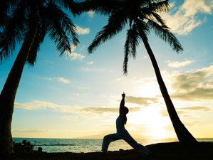 8 Days Vinyasa Yoga Holiday in Magical Sri Lanka