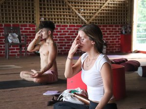 28 Day 300-Hour Advanced Hatha and Ashtanga Yoga Teacher Training in Rishikesh
