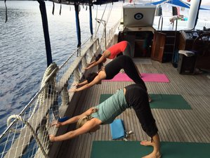 6 Days Yoga Cruise in Turkey