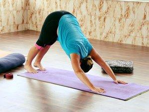 7 Day Intense Meditation and Yoga Retreat in Rishikesh