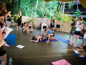 29 Day 200-Hour High Paradise Yoga Teacher Training in Alto Paraiso de Goias, Goiás