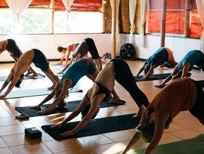 24 Days 200-hour Serenity Yoga Teacher Training in Bali, Indonesia