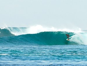 7 Days Amazing Sea Coral Surf Tour in Maldives