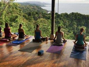 6 Day Rising Wings Jungle Aerial Yoga Retreat in Montezuma, Puntarenas
