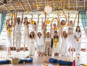12 Days 50 Hours Certification Meditation Teacher Training and Retreat in Koh Phangan, Thailand
