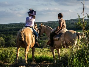 3 Day Medium Difficulty Horse Riding Holiday in Córdoba