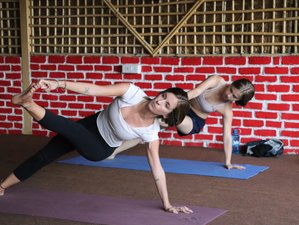 22 Day 200-Hour Hatha and Ashtanga Vinyasa Yoga Teacher Training in Rishikesh