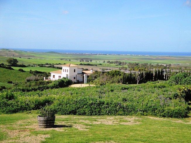 8 Days Detox and Yoga Retreat in Costa de la Luz, Spain