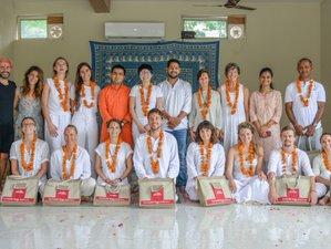 40 Days 500 Hours Yoga Therapy Based Holistic Yoga Teacher Training in Rishikesh, India