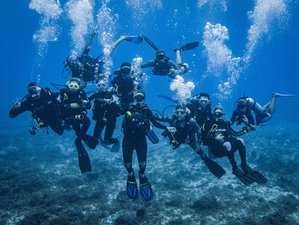 6 Day Scuba Diving and Surf Camp in Tamarindo, Guanacaste