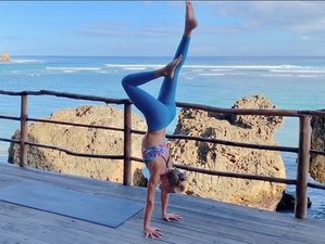 Self-Paced Online 200-Hour Ashtanga Yoga Teacher Training and Free 10-Hour Yin Yoga Training