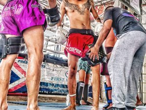 30 Days Muay Thai and Boxing Camp in Koh Phangan, Thailand