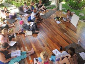 12 Day 100-Hour Yin Yoga Teacher Training with Pranayama, Meditation, and Mindfulness in Málaga