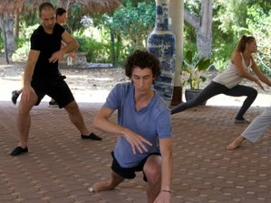 14 Days 5 Element and 8 Trigram Level 1 and 2 Medical Qigong Intensive Course in Koh Samui, Thailand