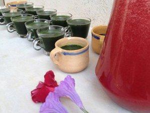 5 Days Juice Detox Retreat in UK