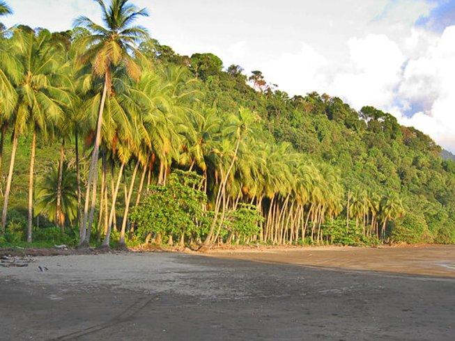 28 Days 200-hour Foundation Yoga Teacher Training in Dominical, Costa Rica