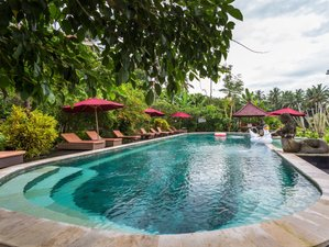 5 Day Restore and Renew Yoga Holiday in Ubud, Bali