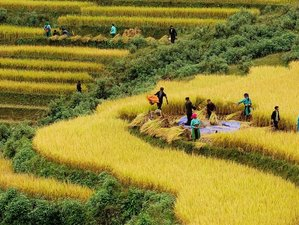7 Days Sapa to The Sea Cooking and Trekking Holiday in Vietnam